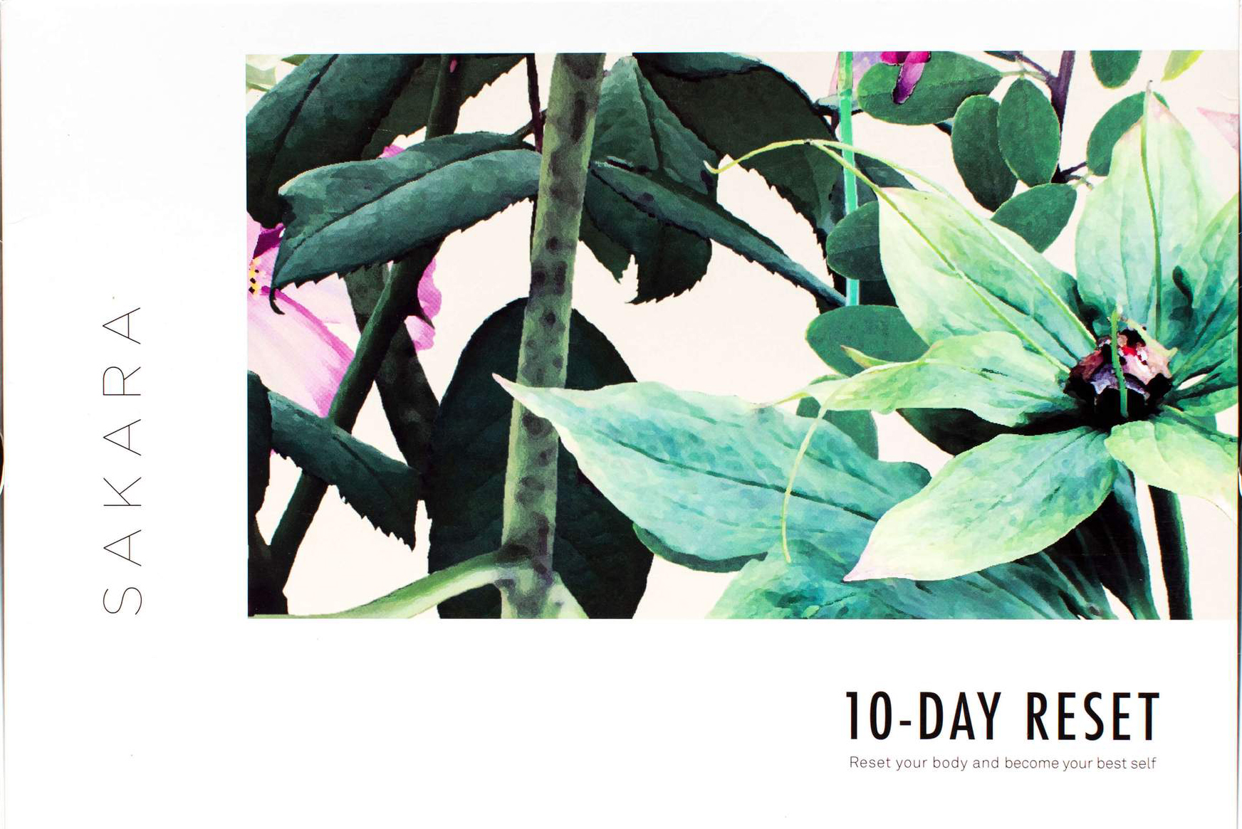 SAKARA 10-Day Reset – DIY Detox